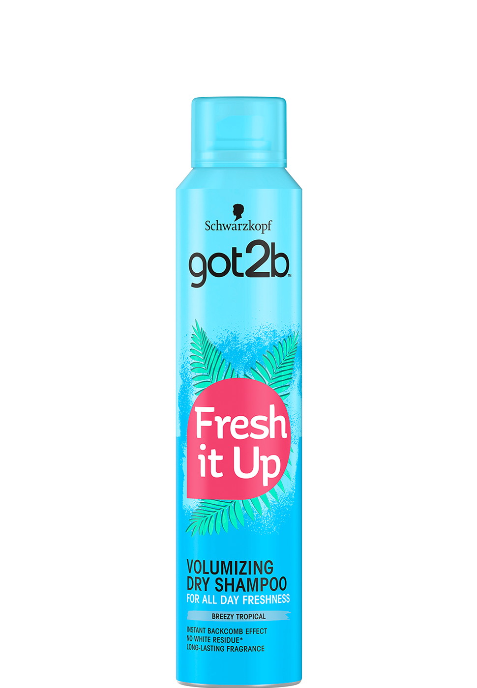 NEW_g2b_DSH_FreshItUp_Volume